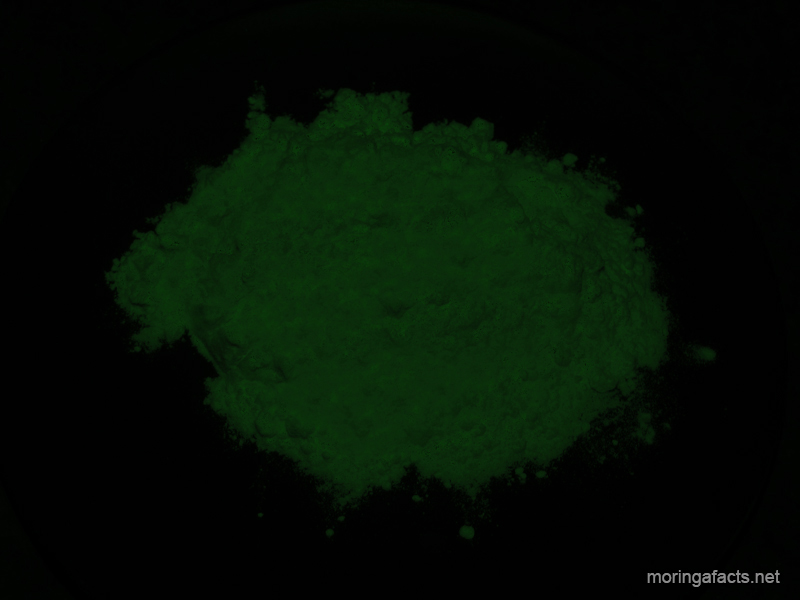 Moringa powder - Moringa facts