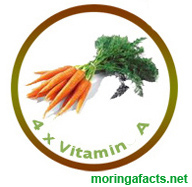 Moringa Oleifera contains 4 times the Vitamin A than Carrots - Moringa facts