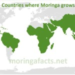 Map Where Moringa Grows