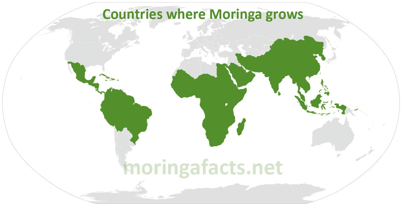 Map Where Moringa Grows - Moringa facts