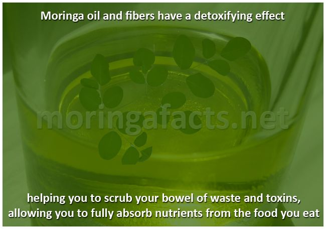 Moringa Oil And Fibers Have a Detoxifying Effect - Moringa facts